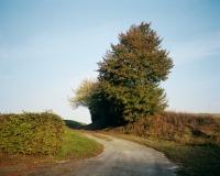 http://bertrandcarriere.com/files/gimgs/th-10_05_lieuxmemes.jpg