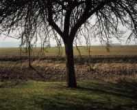 http://bertrandcarriere.com/files/gimgs/th-10_37_lieuxmemes.jpg