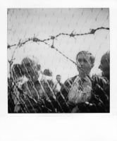 http://bertrandcarriere.com/files/gimgs/th-38_19polaroids of war.jpg