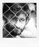 http://bertrandcarriere.com/files/gimgs/th-38_26polaroids of war.jpg